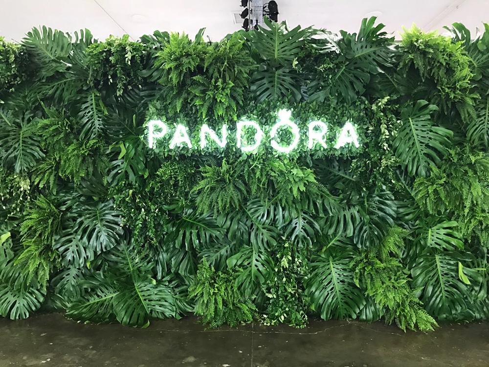 pandora01